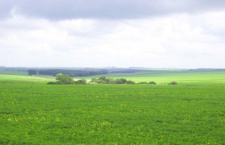 На земельному аукціоні на Хмельниччині оренда землі зросла чи не вдвічі