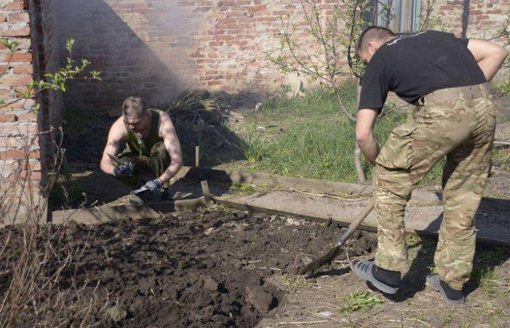 """Як """"колоради"""" знищують городи бійців АТО"""