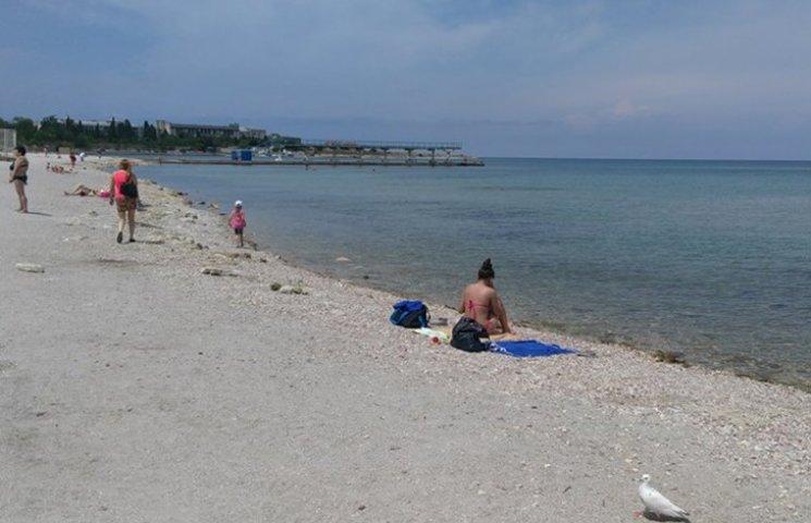 С самого популярного пляжа Севастополя украли весь песок