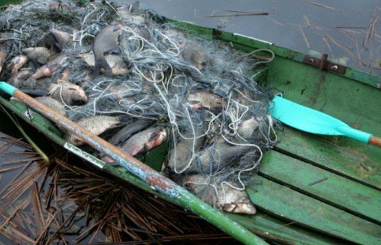 На Миколаївщині можуть ввести мораторій на промисловий вилов риби