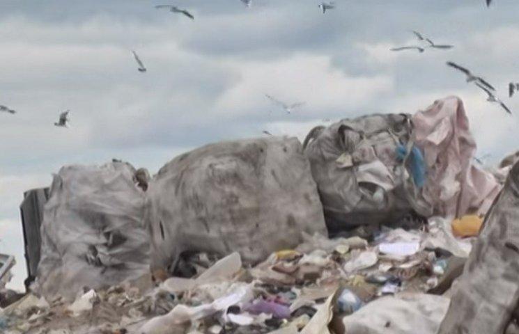 Як закарпатськи роми заробляють на Хмельницькому сміттєзвалищі