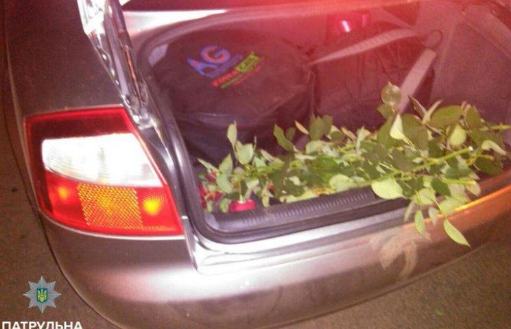 У Корпусному парку Полтави за ніч зрізали 60 троянд