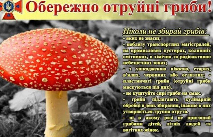 На Миколаївщині двоє людей наїлись лісових грибів та ледь не померли