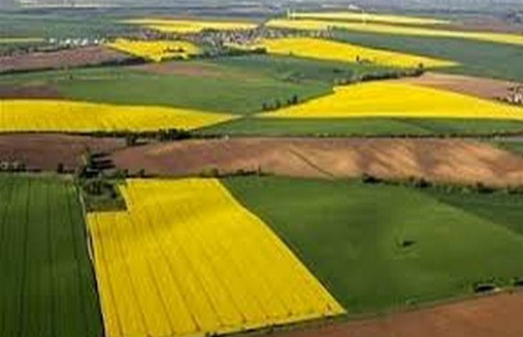 На Хмельниччині іноземець використав не за призначенням 500 гектарів землі