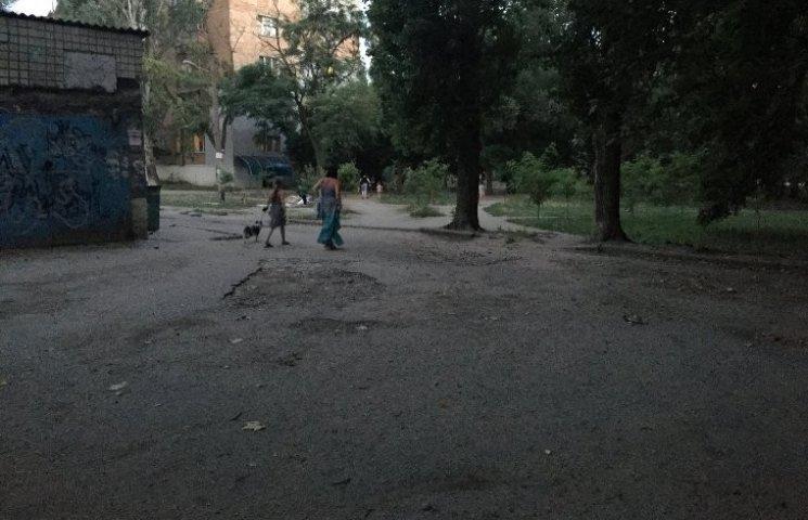 У Миколаєві зграя собак покусала хлопця