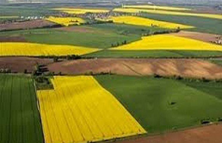 На Хмельничині з незаконної оренди вилучили майже 100 гектарів землі