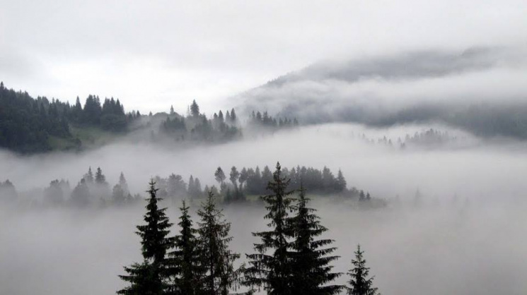 Світлини Карпат, оповитих хмарами, надихають і зачаровують