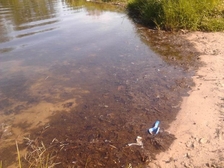 На Полтавщині заборонили купання у Пслі