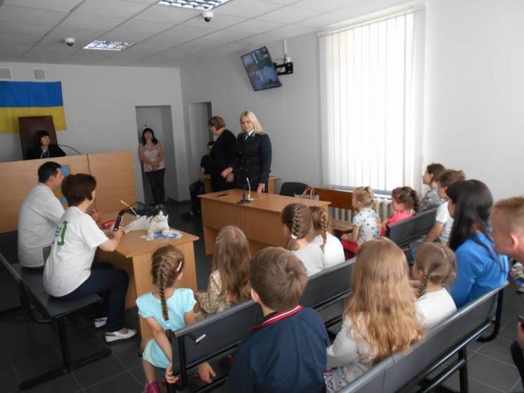 Запорізький суд виправдав кота, обвинувачуваного в крадіжці ковбаси (ФОТОРЕПОРТАЖ)
