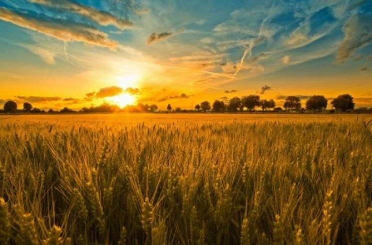 День літнього сонцестояння 21 червня: що не можна робити