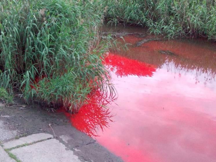 Чим жила Україна: Залізна леді Дніпра, кривава річка та невгамовний патріот