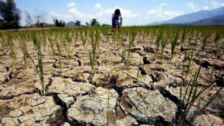 Окупований Крим накрила катастрофічна посуха