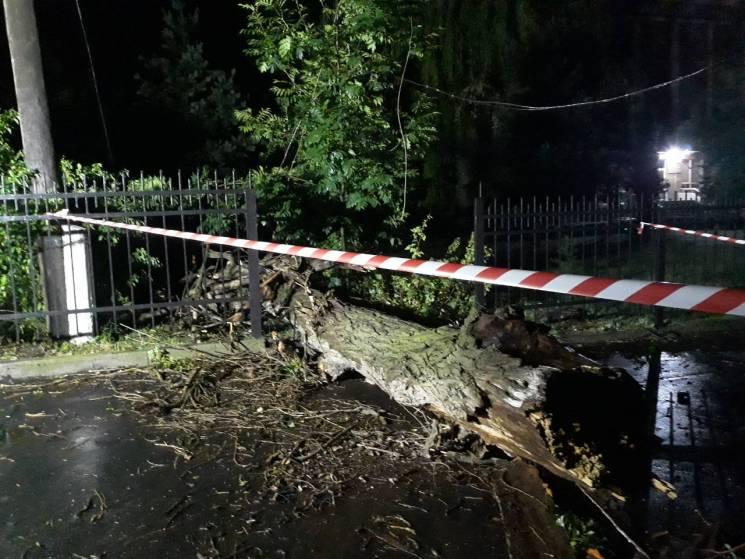 У Вінниці гроза повалила дерева і зірвала дах з будинку (ФОТО)