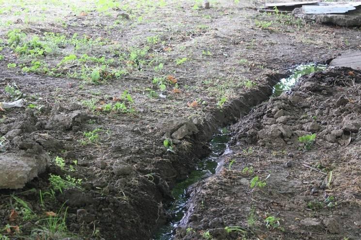 У Нікополі мешканці багатоповерхівки задихаються від смороду фекалій (ФОТО)