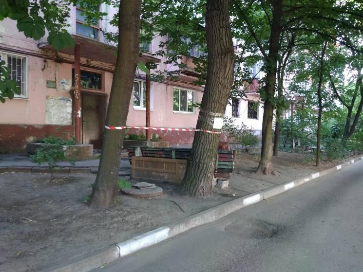 У середмісті Запоріжжя над головами містян нависає велика гілка (ФОТО)