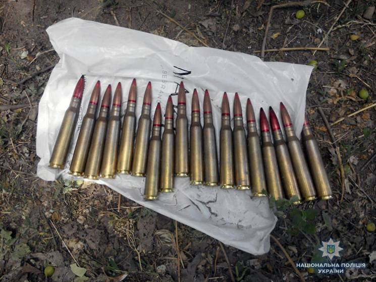 На Запоріжжі селяни облаштували вдома склад зброї (ФОТО)