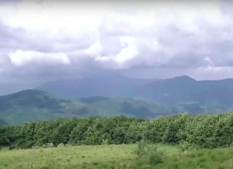 У Родніковій Гуті на Свалявщині з'явиться екопоселення (ВІДЕО)