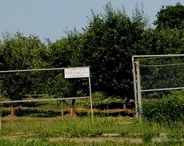 Почаївська лавра, що на Тернопільщині, не пускає прихожан, лякаючи собаками