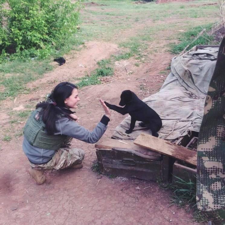 Чим займаються на Донбасі найкращі друзі бійців ООС - 31