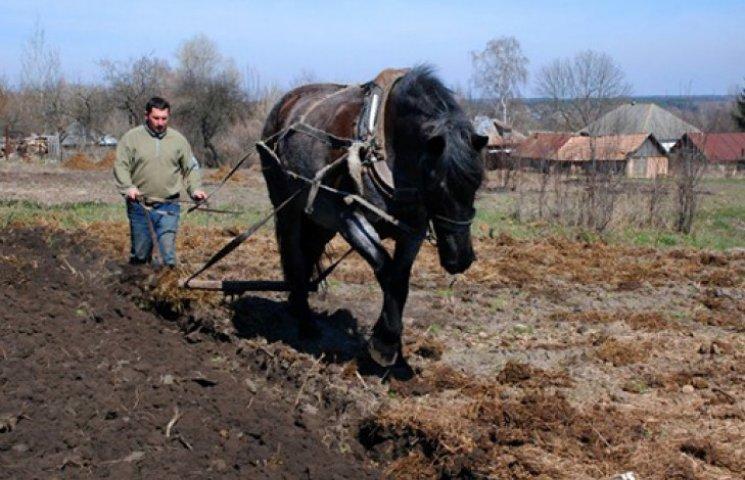 Українцям спростили виділення землі