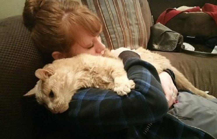 Як жінка врятувала 21-річного кота, взявши його з притулку