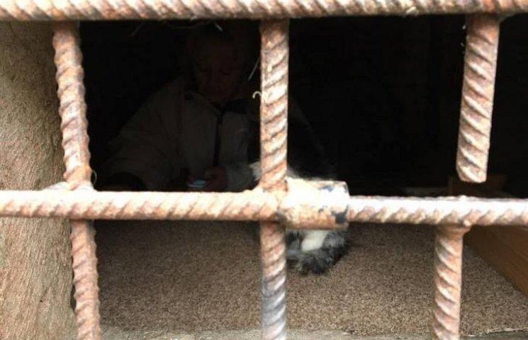 Вінничанка засіла в підвалі і оголосила голодний бойкот