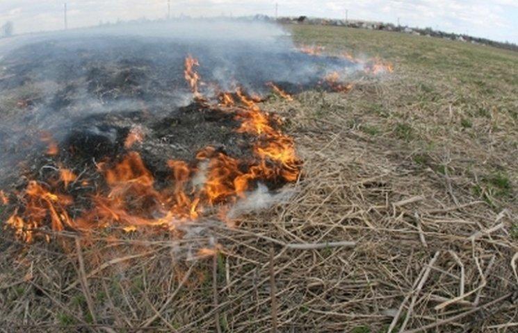 Вінницькі рятувальники чотири години гасили підпалене поле