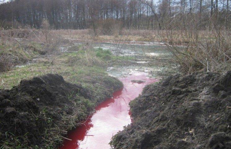 На Тернопільщині потекли криваві ріки