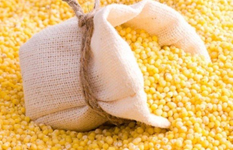На Миколаївщині горе-підприємці намагались незаконно експортувати більше 500 тонн кукурудзи