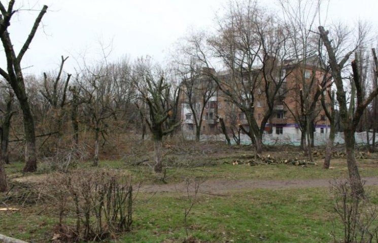 Миколаївці здійняли галасу з вирубки дерев у парку