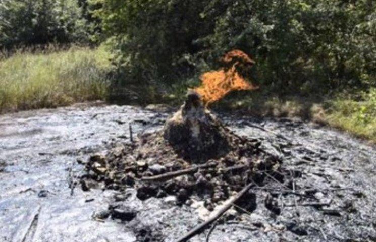 Єдиний в Україні постійно діючий вулкан реагує на землетруси в радіусі 3-6 тис. км