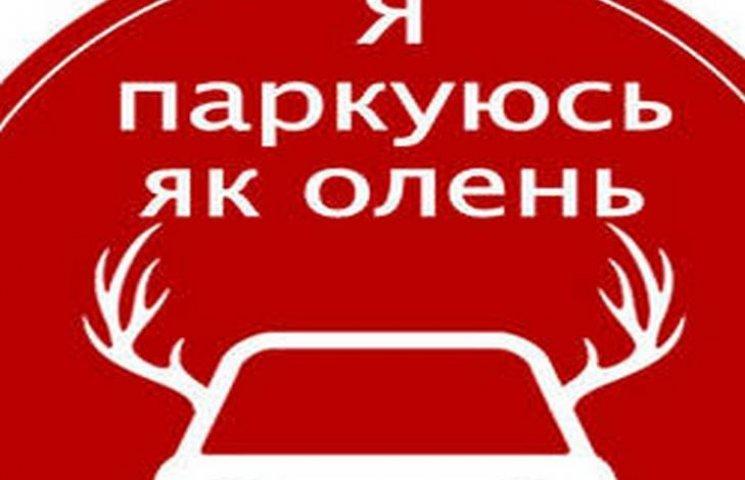 У Львові водій припаркувався, як олень, і розбив голову свідку