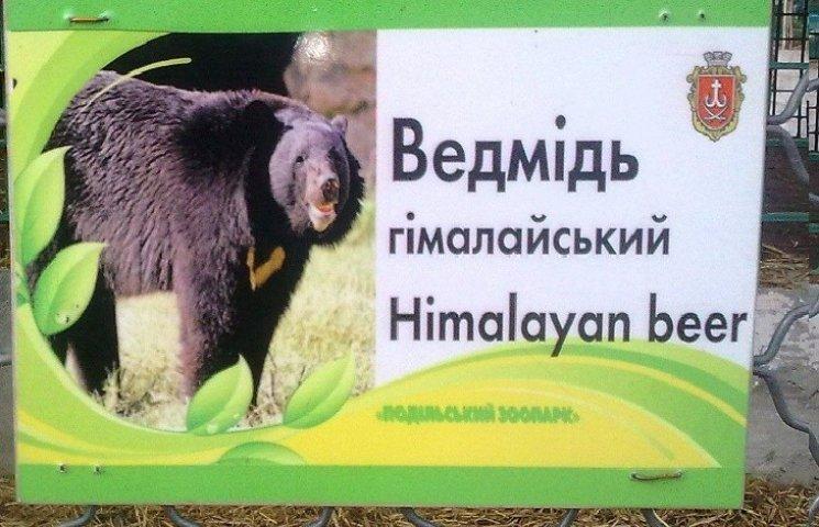 """У Вінницькому зоопарку в клітку посадили """"гімалайське пиво"""""""