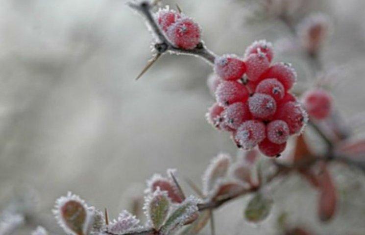 """Морозный март: Киев накрыл """"холодный циклон"""""""