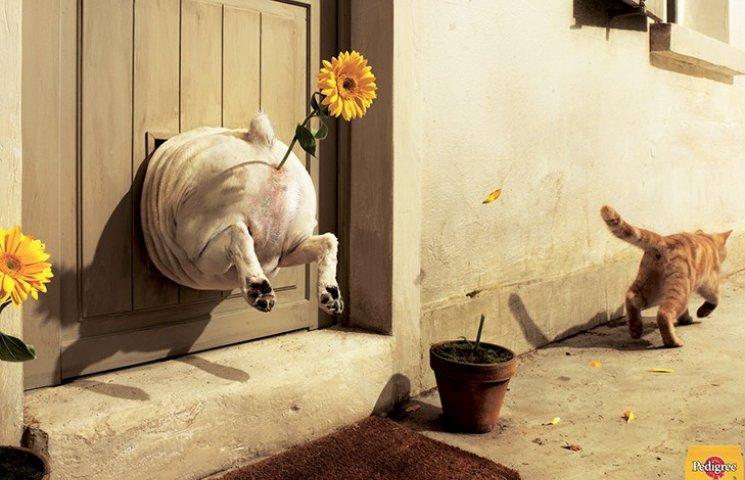 35 самых смешных рекламных постеров