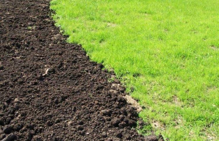 На Миколаївщині для військових АТО зарезервували понад 3 тисячі гектарів землі