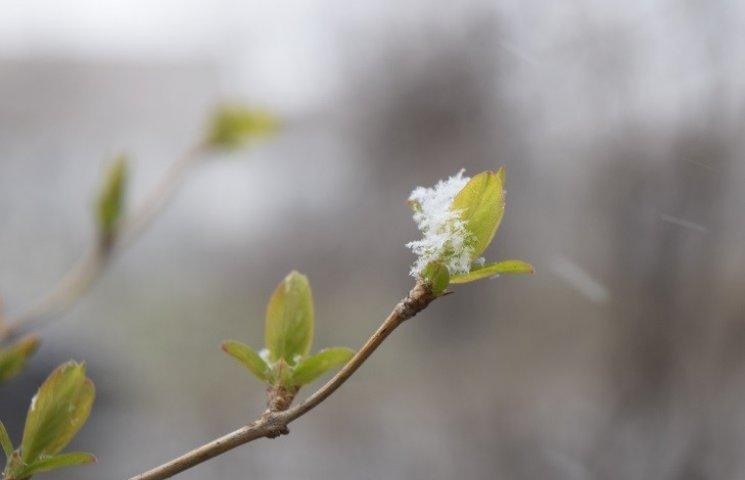 """Дніпропетровськ вкриває """"весняний"""" сніг"""