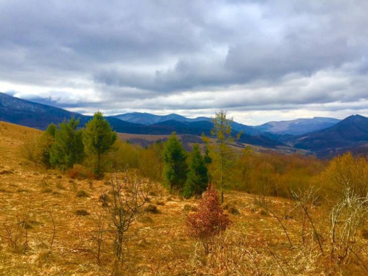 На Закарпатті розширять територію трьох національних природних парків