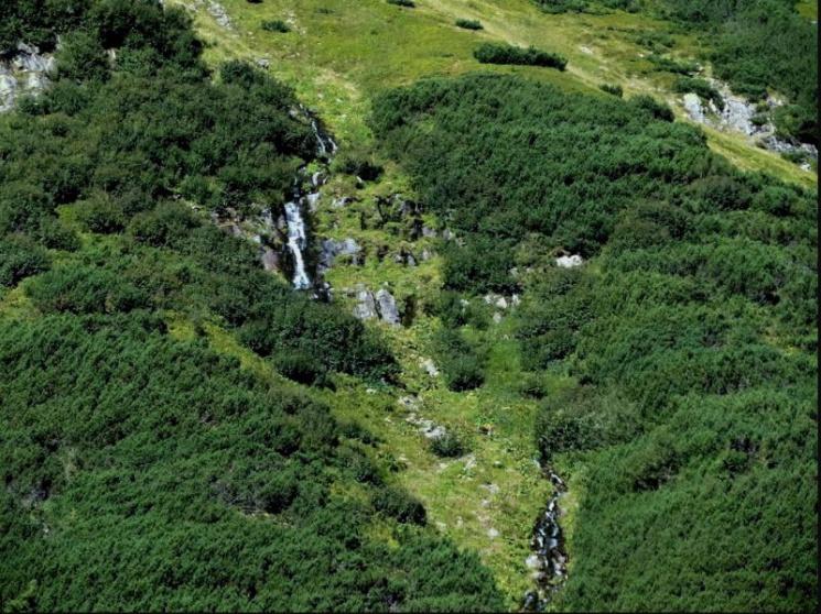 Туристу на замітку: 10 маловідомих водоспадів Карпат фото 6