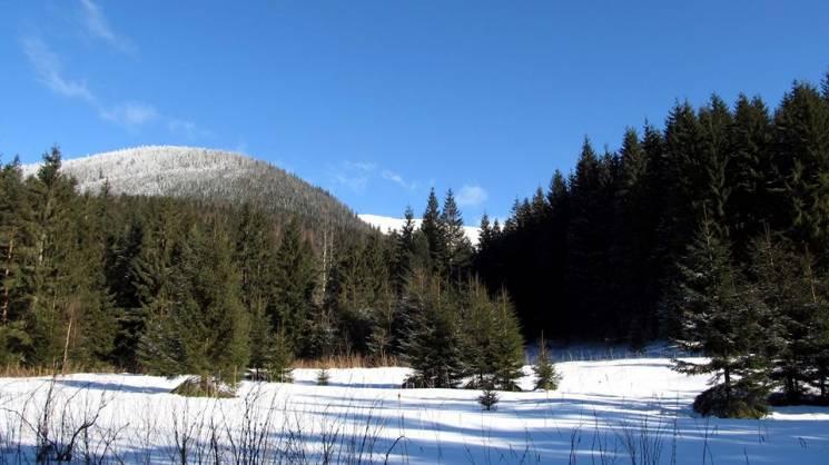 Які краєвиди відкриваються у сонячний сніжний день на гірському хребті Ґорґан (ФОТО)