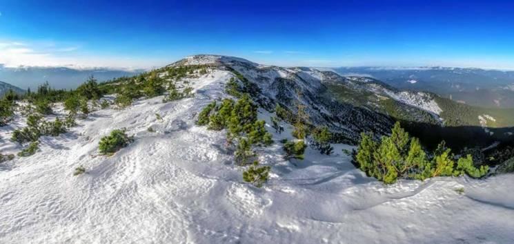 Як високогірні карпатські полонини поступово завойовує весна (ФОТО)