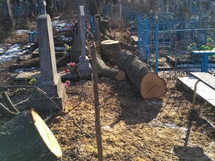 Старокостянтинівські комунальники понівечили надгробки, обрізаючи дерева (ФОТО)