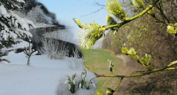 Синоптична карусель: У Києві весняне потепління зміниться сильними морозами