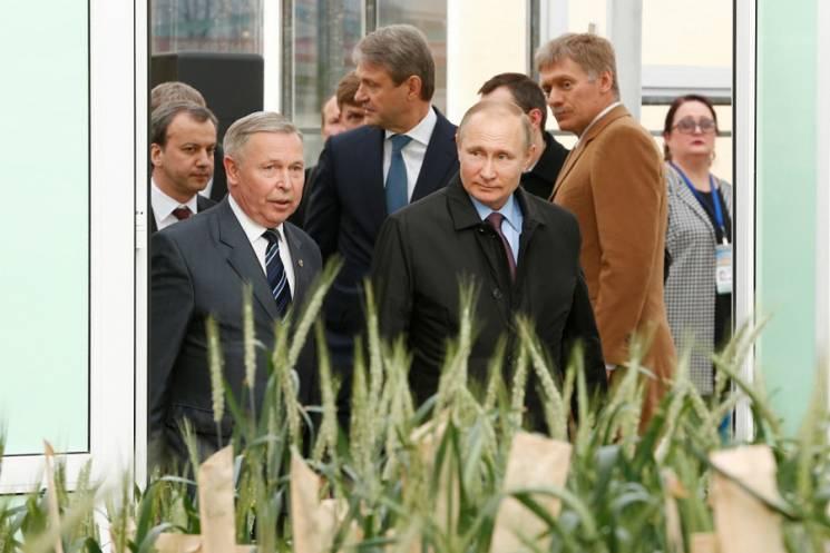 Путин учился выращивать пшеницу и конопл…