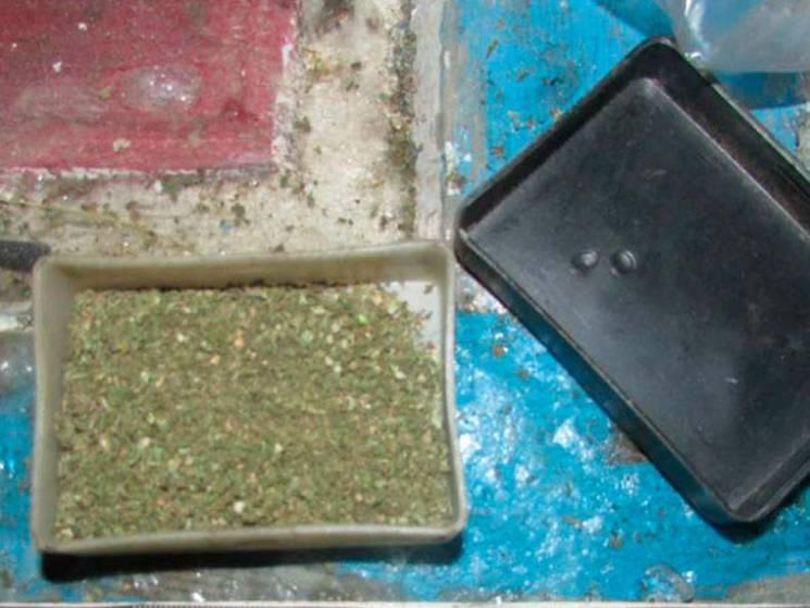 """Весняні запаси: Вдома у полтавця поліцейські знайшли кілограм """"травички"""""""