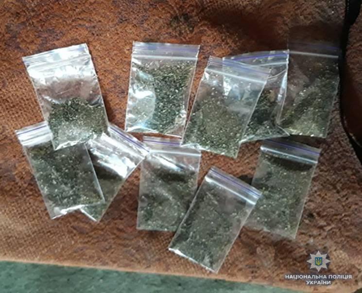 На Запоріжжі правоохоронці вилучили наркотиків на 60 тисяч гривень