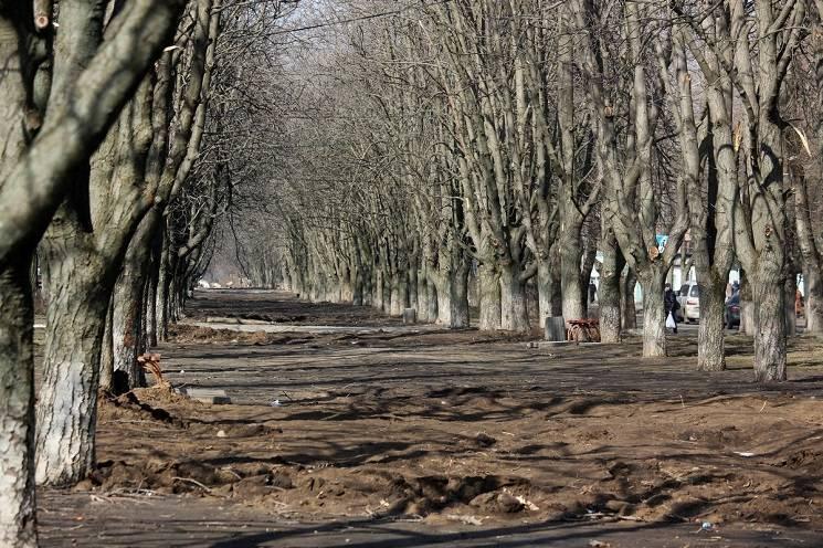 У Нікополі люди не можуть пересуватися центральною алеєю через багнюку (ФОТО)