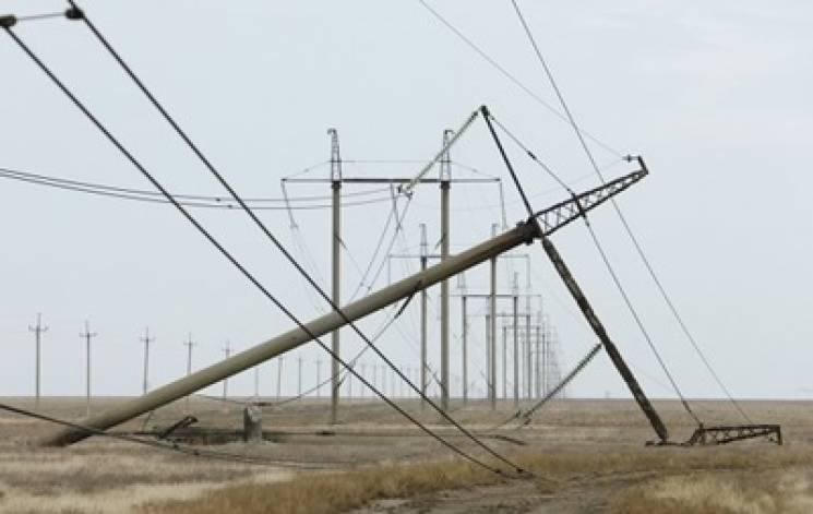 У Збаражі повалене негодою дерево пошкодило лінії електропеедач