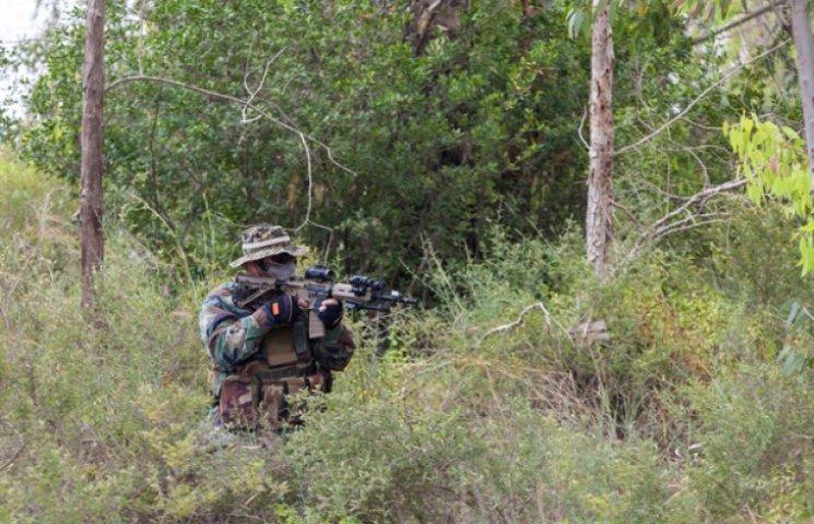 Учебная тревога украинских военных перепугала лесных террористов