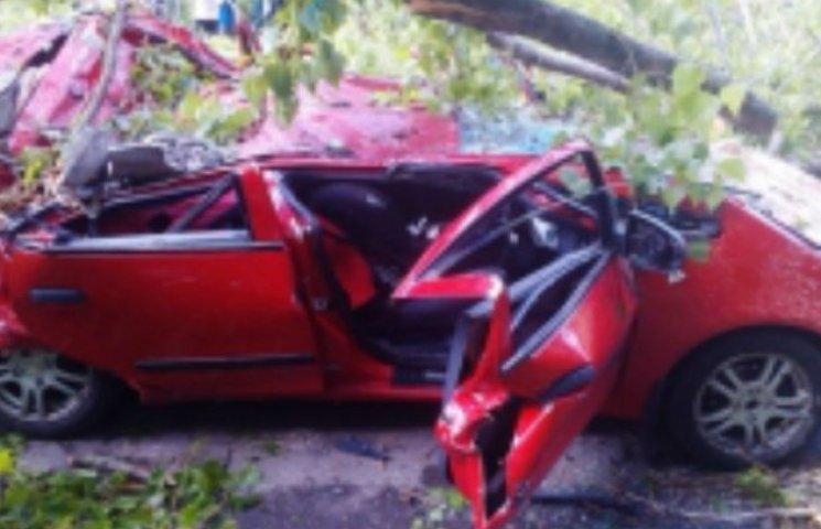 Жахлива трагедія у Києві: Дерево впало на автівку і розчавило дитину, що сиділа в салоні (ФОТО)